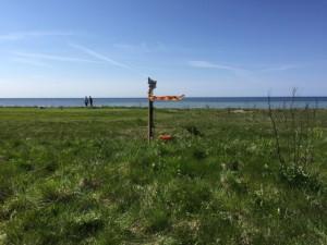 2015-05-03_Sydkustloppet1